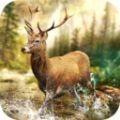 狩獵比賽 v2.13c安卓版