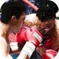 格斗大師拳擊冠軍 v1.0安卓版