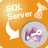 MsSqlToAccess(MSSQL转Access工具) v1.3