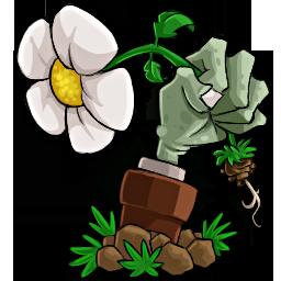 植物大戰僵尸雨版修改文件 v24