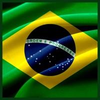 巴西美食食谱 v1.0苹果版