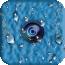 水柔相機 v3.2.6.220安卓版
