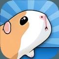 養豚鼠進化模擬器 v1.0安卓版
