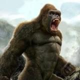 大猩猩狩獵 v1.0.1安卓版