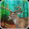 狩獵普通鹿2020 v1.6安卓版