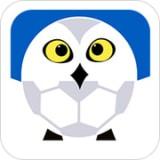 雪緣園足球 v3.1.1安卓版