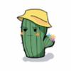 小小仙人掌 v1.0安卓版