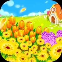 多多花園 v1.0蘋果版