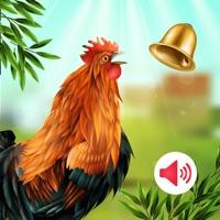 动物声音铃声 v1.0苹果版