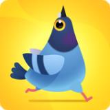 鴿子捕食 v1.2.5安卓版